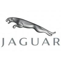 Reprezentanta Jaguar
